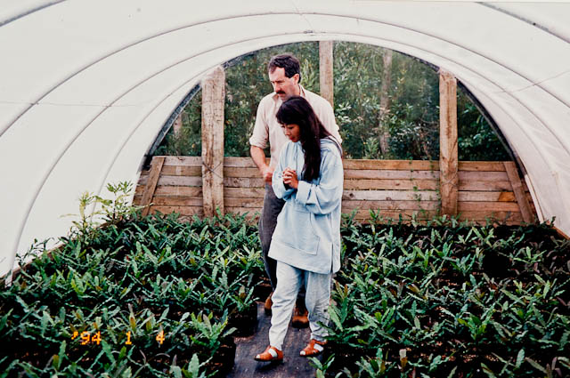 0018_macadamia_tunnel_house_1994