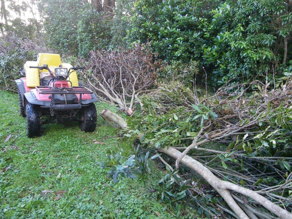 Quadrunner Christine used to tow storm damaged trees.